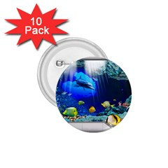 Dolphin Art Creation Natural Water 1 75  Buttons (10 Pack)