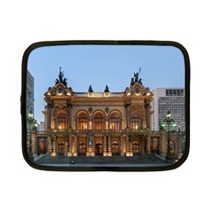 Municipal Theatre Of Sao Paulo Brazil Netbook Case (small)