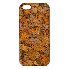 Leaves Motif Pattern Photo 2 Iphone 5s/ Se Premium Hardshell Case