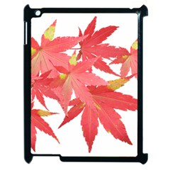 Leaves Maple Branch Autumn Fall Apple Ipad 2 Case (black) by Sapixe