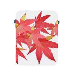 Leaves Maple Branch Autumn Fall Apple Ipad 2/3/4 Protective Soft Cases by Sapixe