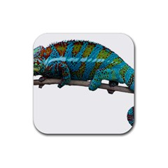Reptile Lizard Animal Isolated Rubber Square Coaster (4 Pack)  by Sapixe