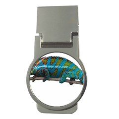 Reptile Lizard Animal Isolated Money Clips (round)  by Sapixe