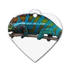 Reptile Lizard Animal Isolated Dog Tag Heart (one Side) by Sapixe
