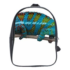 Reptile Lizard Animal Isolated School Bag (large) by Sapixe
