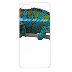 Reptile Lizard Animal Isolated Apple Iphone 5 Seamless Case (white) by Sapixe