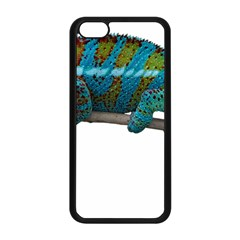 Reptile Lizard Animal Isolated Apple Iphone 5c Seamless Case (black) by Sapixe