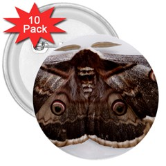 Night Butterfly Butterfly Giant 3  Buttons (10 Pack)
