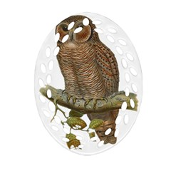 Bird Owl Animal Vintage Isolated Oval Filigree Ornament (two Sides)