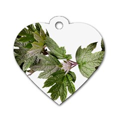 Leaves Plant Branch Nature Foliage Dog Tag Heart (two Sides) by Sapixe