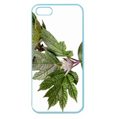 Leaves Plant Branch Nature Foliage Apple Seamless Iphone 5 Case (color)