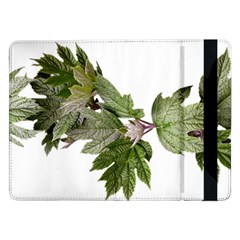 Leaves Plant Branch Nature Foliage Samsung Galaxy Tab Pro 12 2  Flip Case