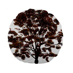 Tree Vector Ornament Color Standard 15  Premium Round Cushions by Sapixe