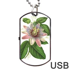 Passion Flower Flower Plant Blossom Dog Tag Usb Flash (two Sides) by Sapixe