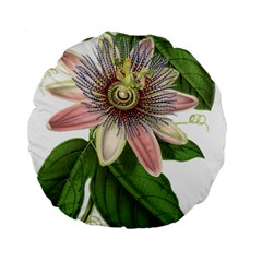Passion Flower Flower Plant Blossom Standard 15  Premium Flano Round Cushions by Sapixe