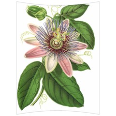 Passion Flower Flower Plant Blossom Back Support Cushion by Sapixe