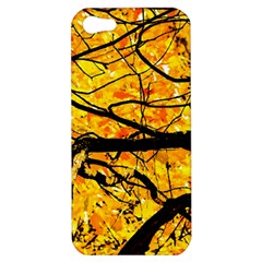 Golden Vein Apple Iphone 5 Hardshell Case by FunnyCow