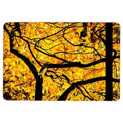 Golden Vein Ipad Air 2 Flip by FunnyCow