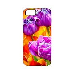 Tulip Flowers Apple Iphone 5 Classic Hardshell Case (pc+silicone) by FunnyCow