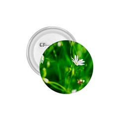Inside The Grass 1 75  Buttons by FunnyCow