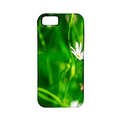 Inside The Grass Apple Iphone 5 Classic Hardshell Case (pc+silicone) by FunnyCow