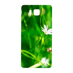 Inside The Grass Samsung Galaxy Alpha Hardshell Back Case by FunnyCow
