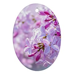 Pink Lilac Flowers Oval Ornament (two Sides) by FunnyCow