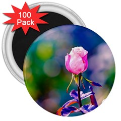 Pink Rose Flower 3  Magnets (100 Pack) by FunnyCow