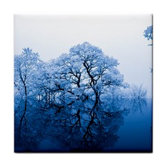Nature Inspiration Trees Blue Face Towel