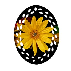 Sun Flower Blossom Bloom Particles Ornament (oval Filigree)