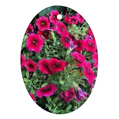 Pink Petunias Ornament (oval)