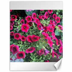 Pink Petunias Canvas 36  X 48   by bloomingvinedesign