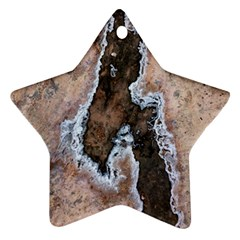 Earth Art Natural Texture Salt Of The Earth Star Ornament (two Sides)