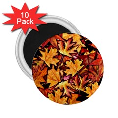 Fall Leaves Pattern 2 25  Magnets (10 Pack)