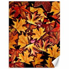 Fall Leaves Pattern Canvas 18  X 24