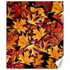 Fall Leaves Pattern Canvas 20  X 24