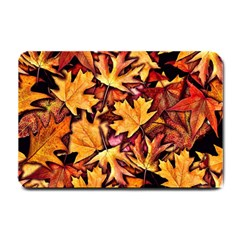 Fall Leaves Pattern Small Doormat