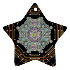 Butterflies And Flowers A In Romantic Universe Star Ornament (two Sides)