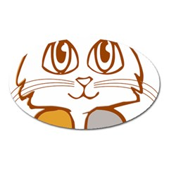 Animal Cat Feline Kitten Pet Oval Magnet