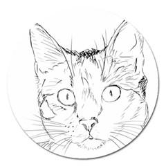 Cat Feline Animal Pet Magnet 5  (round)