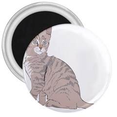 Kitten Cat Drawing Line Art Line 3  Magnets
