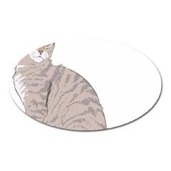 Kitten Cat Drawing Line Art Line Oval Magnet