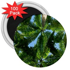 Paradise Under The Palms 3  Magnets (100 Pack) by CrypticFragmentsColors