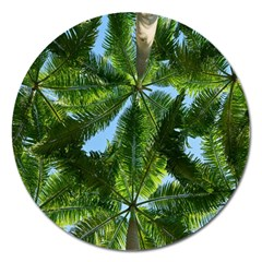 Paradise Under The Palms Magnet 5  (round)