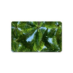 Paradise Under The Palms Magnet (name Card)