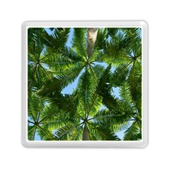 Paradise Under The Palms Memory Card Reader (square)