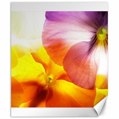 Big Colorful Tropical Yellow And Purple  Canvas 20  X 24