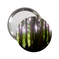 Tree Of Trees 2 25  Handbag Mirrors
