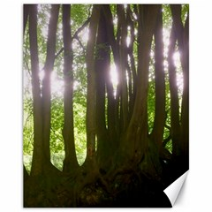 Tree Of Trees Canvas 11  X 14