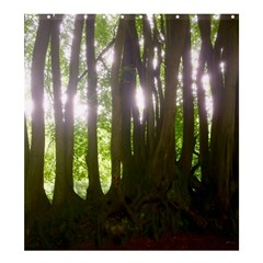 Tree Of Trees Shower Curtain 66  X 72  (large)